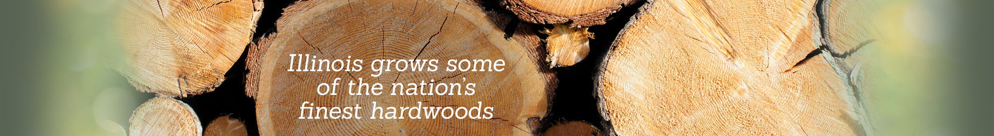 Illinois grows some of the nation's finest hardwoods.